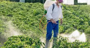 Demack Safety Boom Pesticide Spraying course